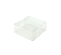 PVC CLEAR CASE - Small