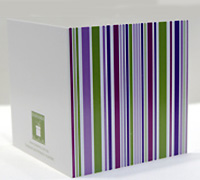GIFT CARD MULTI STRIPES-Musk/Mag/Purple/Avo